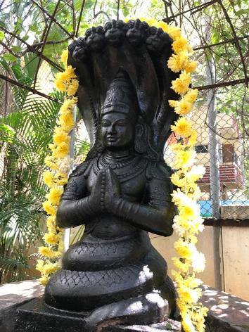 Parañjali - Yoga Bhoga